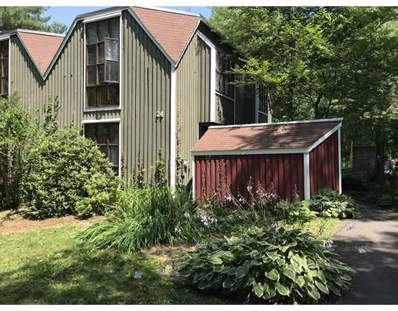 24 Pine Grove UNIT 24, Amherst, MA 01002 - #: 72363535
