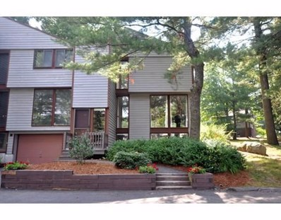 217 Meadows Edge UNIT 187, Acton, MA 01718 - #: 72364817