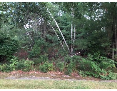 13 Overlook Dr, Franklin, MA 02038 - #: 72367428