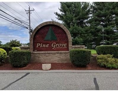 177 Pine Grove UNIT 177, South Hadley, MA 01075 - #: 72383622