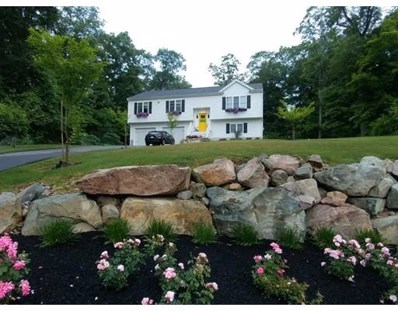 20 Mill Hill St, Randolph, MA 02368 - #: 72392662