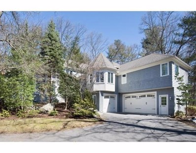 24 Puddingstone Ln, Newton, MA 02459 - #: 72401322