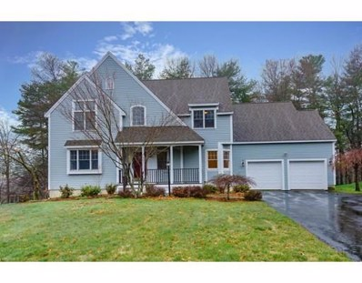 4 Greybirch Ln UNIT 4, Acton, MA 01720 - #: 72406805