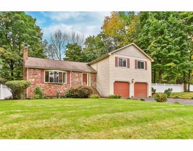 33 Lurie Cir, Stoughton, MA 02072 - #: 72409741