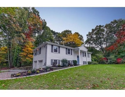 10 Broadview St, Acton, MA 01720 - #: 72411983