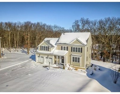 23 Mcintosh Lane, Littleton, MA 01460 - #: 72445008