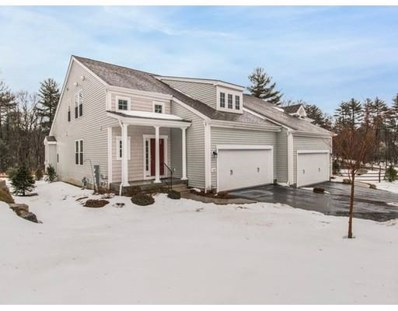 172 Skyline Dr UNIT 172, Acton, MA 01720 - #: 72446602