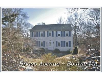24 Briggs Avenue, Bourne, MA 02532 - #: 72456272