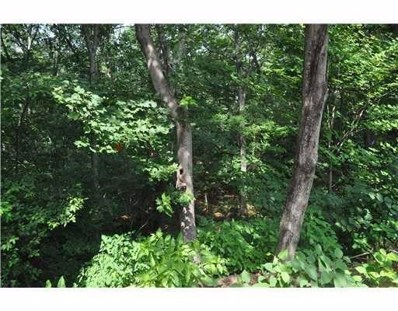 67 Harkness Road, Millville, MA 01529 - #: 72462450