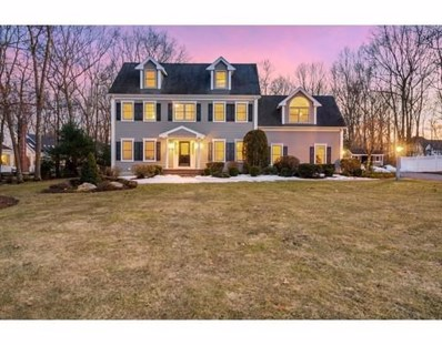 17 Stable Way, Medway, MA 02053 - #: 72468435