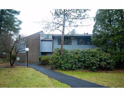 227 Bankside Hollow UNIT 179, Acton, MA 01718 - #: 72480523
