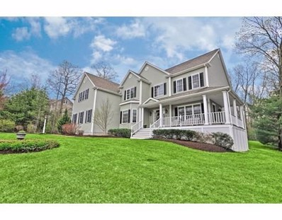 119 Oak Hill Ave, Wrentham, MA 02093 - #: 72493227