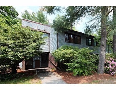 244 Old Beaverbrook UNIT 156, Acton, MA 01718 - #: 72515391
