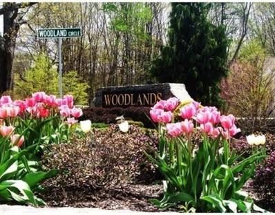 801 Ledgewood Way UNIT 801, Clinton, MA 01510 - #: 72560931