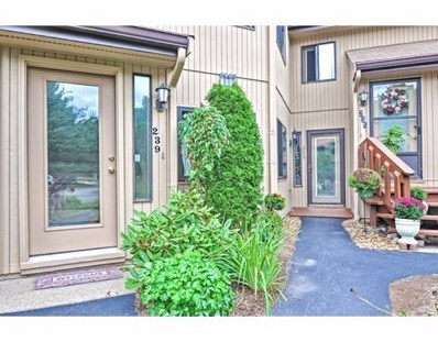 233 Trailside Way UNIT 233, Ashland, MA 01721 - #: 72564017