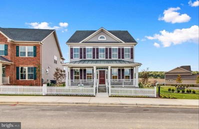 153 Limpkin Avenue, Clarksburg, MD 20871 - MLS#: 1000055183