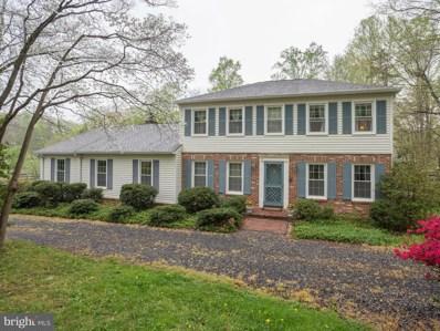 11728 Amkin Drive, Clifton, VA 20124 - MLS#: 1000063973