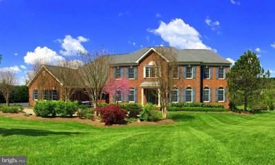 17821 Tobermory Place, Leesburg, VA 20175 - MLS#: 1000088265