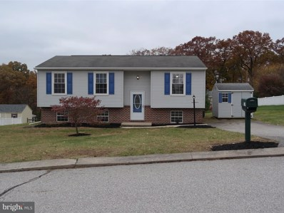 314 Pine Valley Drive, Felton, PA 17322 - MLS#: 1000091138
