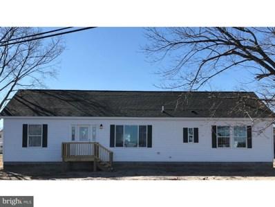 25378 Radish Road, Millsboro, DE 19966 - MLS#: 1000143948