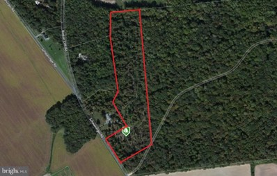 Schwaninger Road, Trappe, MD 21673 - MLS#: 1000159647