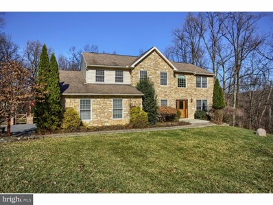 16 Tammy Louise Drive, Fleetwood, PA 19522 - #: 1000163048