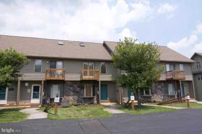 257 Marsh Hill Road UNIT 22, Mc Henry, MD 21541 - #: 1000166954