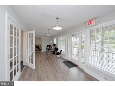 30 W Bridge Street UNIT 3, New Hope, PA 18938 - MLS#: 1000243437