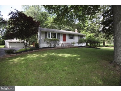 740 Skunk Hollow Road, Chalfont, PA 18914 - MLS#: 1000244217