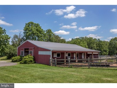 41 Red Hill Road, Pipersville, PA 18947 - #: 1000245367