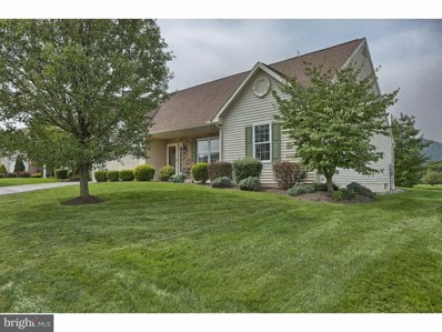 114 Day Lily Drive, Sinking Spring, PA 19608 - MLS#: 1000257637