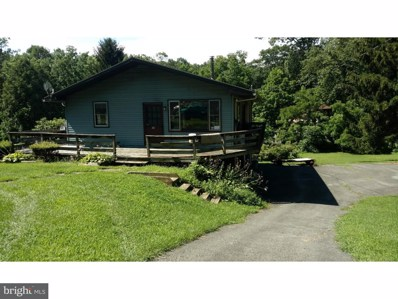 28 Yeager Road, Lenhartsville, PA 19534 - MLS#: 1000259417
