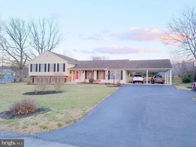 26 Antioch Road, Luray, VA 22835 - #: 1000263792