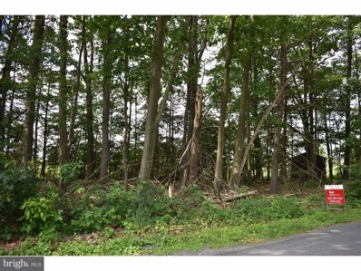 Birds Hill Road, Pine Grove, PA 17963 - MLS#: 1000268221