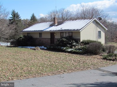 928 Brownsville Road, Wernersville, PA 19565 - MLS#: 1000276224