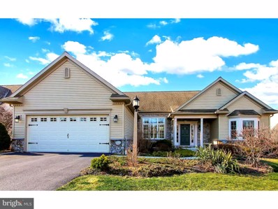 44 Winterberry Lane, Womelsdorf, PA 19567 - #: 1000285802