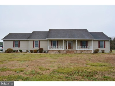 6352 Ray Road, Bridgeville, DE 19933 - MLS#: 1000300068