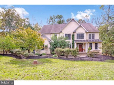 300 Saint Andrews Court, New Hope, PA 18938 - MLS#: 1000306248