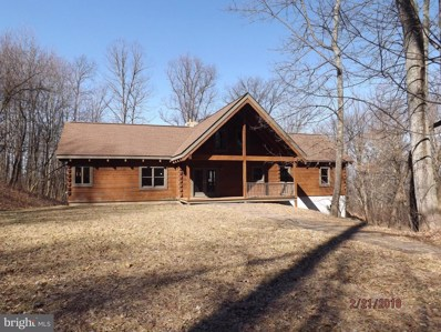 125 Freeze Road, Linden, VA 22642 - MLS#: 1000308776