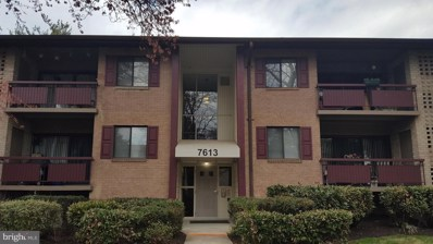 7613 Lee Highway UNIT 201