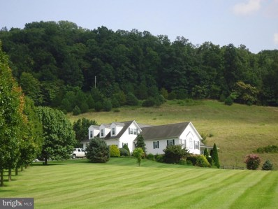 3787 Farmview Road, Stanley, VA 22851 - #: 1000335904