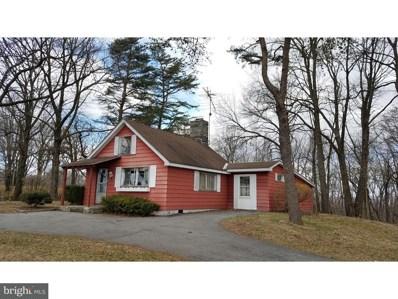 165 Maidencreek Road, Fleetwood, PA 19522 - MLS#: 1000336924