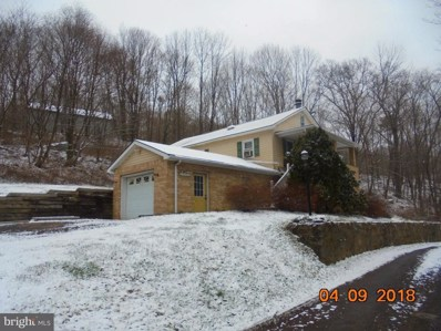 15501 Cool Mist Lane SW, Lonaconing, MD 21539 - #: 1000370388