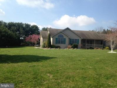 243 Blue Spruce Drive, Magnolia, DE 19962 - MLS#: 1000382448