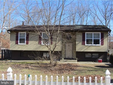 40 Damascus Road, Franklinville, NJ 08322 - MLS#: 1000425052