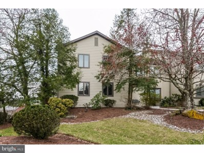 64 Parchment Drive, New Hope, PA 18938 - MLS#: 1000426344