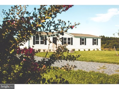 250 Wheat Drive, Marydel, DE 19964 - MLS#: 1000443407