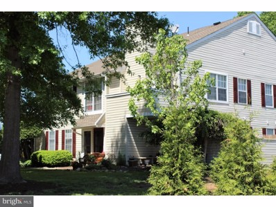 181 Shire Drive UNIT 18A, New Hope, PA 18938 - MLS#: 1000443864