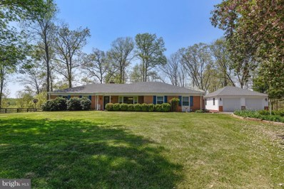 7142 Waterford Road, Rixeyville, VA 22737 - #: 1000490546