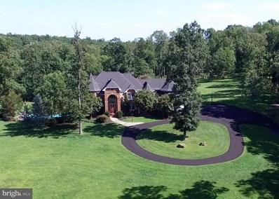 41155 Trotter Lane, Paeonian Springs, VA 20129 - #: 1000868298